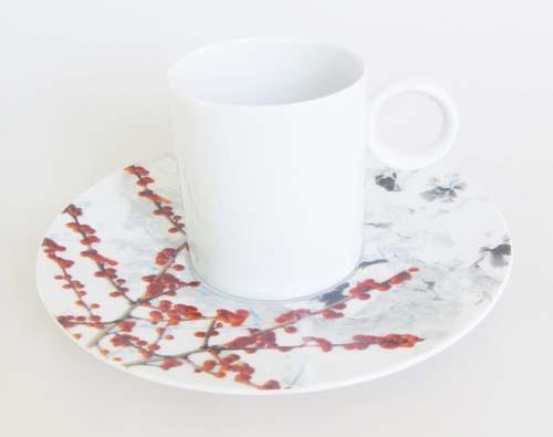 Sophienthal Rosenthal Group Kaffeetasse mit Untertasse Winter Limitiert 2005