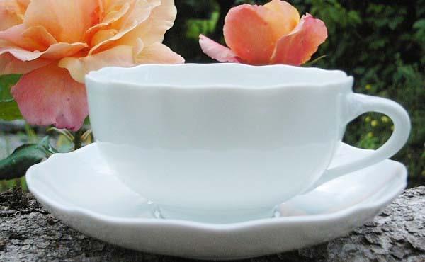 Hutschenreuther Maria Theresia weiß Teetasse mit Untertasse